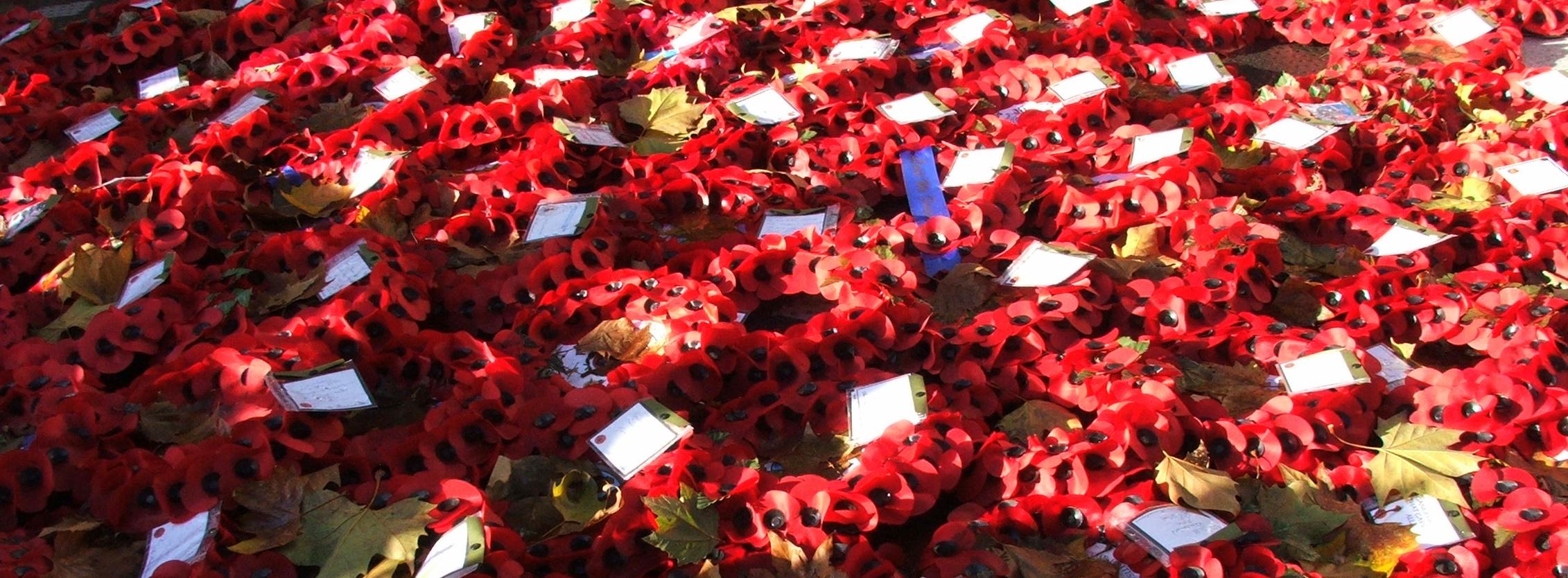 poppy-wreaths-1186064