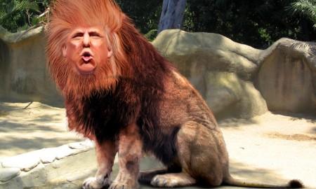 trump lion