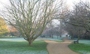 University Parks, Winter 2006